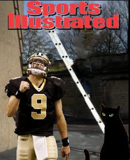 brees cat 1