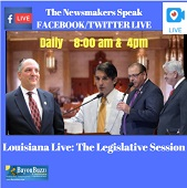 newsmakers lives legislature small