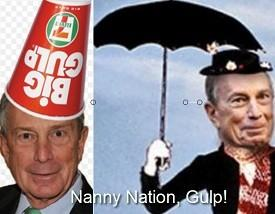 nanny nation