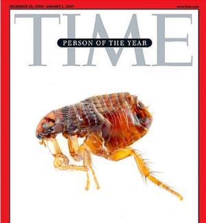 Flea-person-of-year2